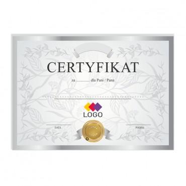 Certyfikat - projekt 45